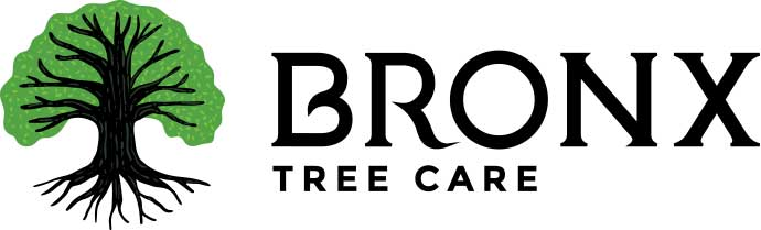 Bronx Tree Care